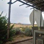 """Vista dall'abitazione """"Noce moscata"""""""