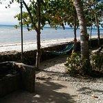 Photo de Kiwi Dive Resort