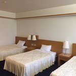 The room is large by Japanese hotel standard.