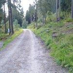 Wege zum Wanden / Radeln und ggf Reiten