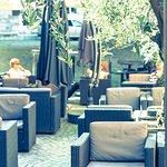 La terrasse et ses oliviers