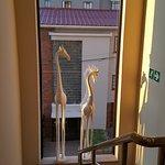 Sugar Hotel & Spa Foto