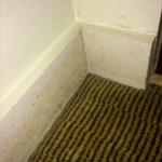 Foto di Holiday Inn Cambridge