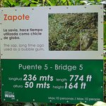 Photo de Costa Rica Sky Adventures - Monteverde Park