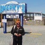 Sharky's Foto
