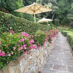 Photo de Belmond Villa San Michele