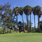 Golf Las Americas Foto
