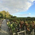 Photo de Chateau Cordeillan-Bages