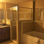 Bathroom - large size with jacuzzi tub and entrance from bedroom as well as foyer