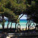 Iberostar Playa de Muro Village Foto