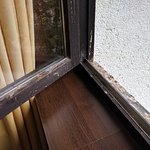 Bird droppings on window sill - awful smell.