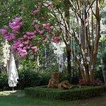 Photo of Villa Sonnino