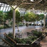 Sheraton Hotel Newfoundland Foto