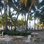 Photo of Coral Costa Caribe Resort & Spa