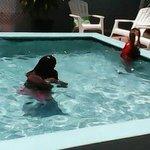 Foto de Spence Holiday Resort & Spence Terrace