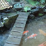 Japanese Garden!!