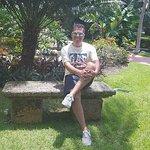 Foto de Velas Vallarta Suite Resort