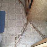 Cracked, curling floor