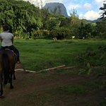 Ranch Opunohu Valley Foto