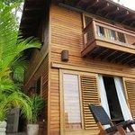 Kinkajou Luxury Tree House