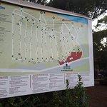 PuntAla Camping Resort Foto
