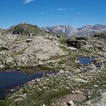 Photo of Alpina