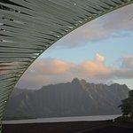 Photo de Paradise Bay Resort Hawaii