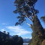 Foto de Wilderness Lodge Lake Moeraki