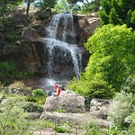 Klippträdgården/Rock garden