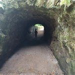 Weston Park Foto
