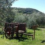 Photo de Agriturismo Belagaggio