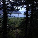 Foto de Kenai Fjords Glacier Lodge