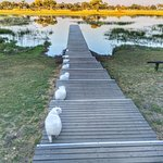 Foto de andBeyond Xaranna Okavango Delta Camp