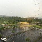 Foto de Hilton Garden Inn Liberia Airport