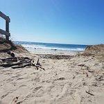 Coastal walk Foto