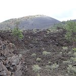 View of Lava Field and Sunset Crater