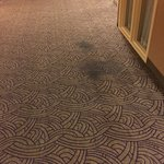 Embassy Suites by Hilton Portland Airport Foto