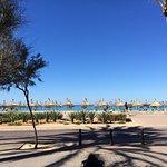 Foto di Hotel HSM Venus Playa