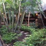 Photo de Kaia Tani Guesthouse