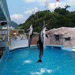 Shimoda Aquarium