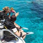 Photo de Tiran Island