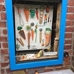 Museum of Carrots