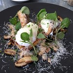 Wild mushroom with poached eggs