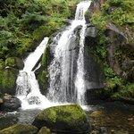 Triberger Waterfall Foto