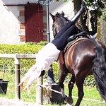 Cascade à cheval
