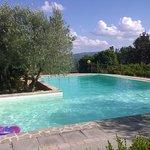 Foto de Agriturismo Borgo Casaglia