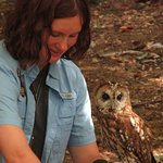 Wildlife Images - Rehabilitation & Education Center Foto