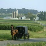 Foto di Country Inn & Suites By Carlson, Lancaster (Amish Country)