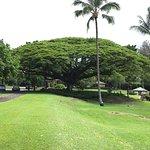 Photo de Castle Hilo Hawaiian Hotel