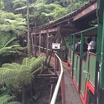 Photo de Driving Creek Railway and Potteries